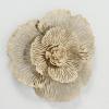 Fleur seinäkoriste kukka