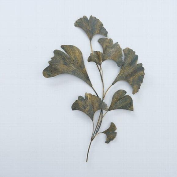 Ginkgo seinäkoriste kasvi